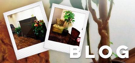 美容室noble(ノーブル)のブログはこちら