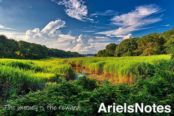 Arielsnotes