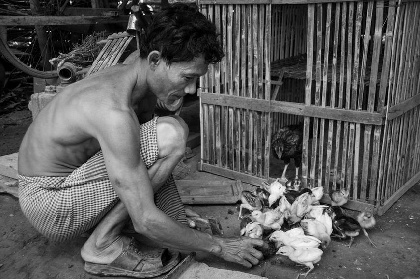 Cambodge, 2009