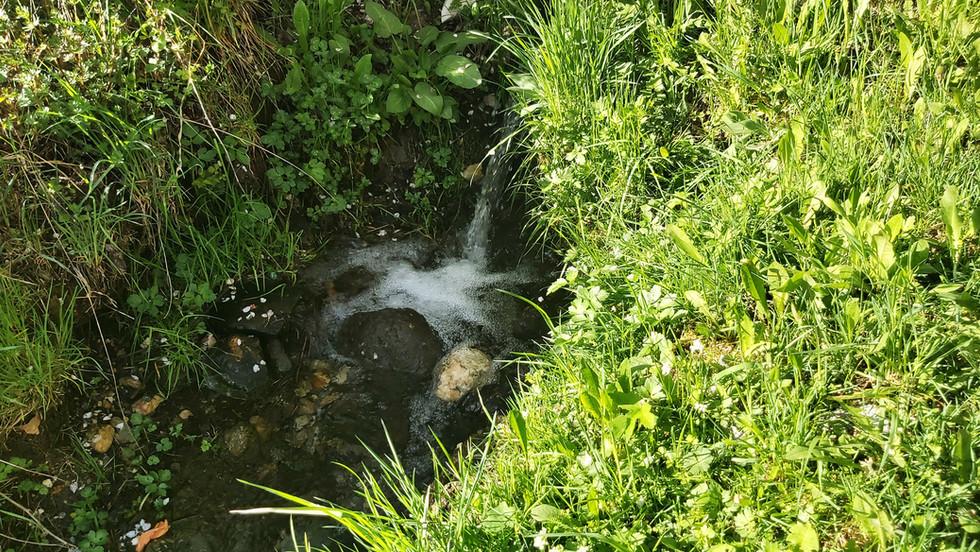 Petit canal dans la propriété