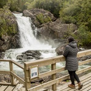 Comunidades aledañas participarán en actualización del plan de manejo del parque Alerce Andino.