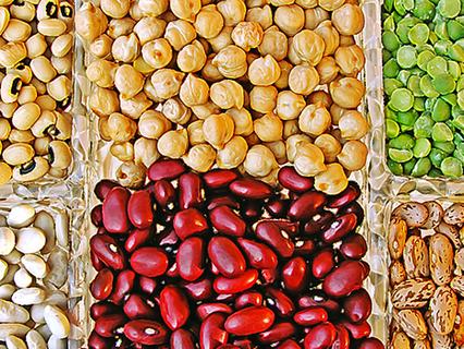 Il consumo prevalente di proteine vegetali si associa nel tempo a un rischio ridotto di mortalità pe