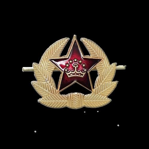 """Кокарда """"Таджикистан"""" большая"""