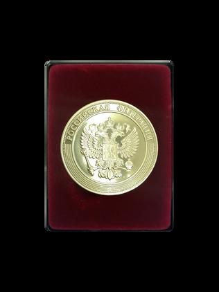 Медаль «За особые успехи в учении» Министерство просвещения Российской Федерации