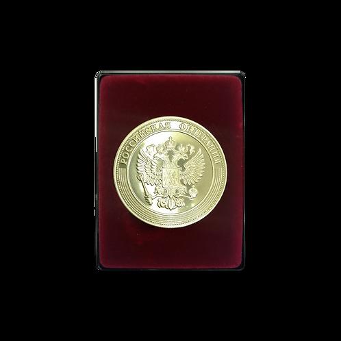 Медаль «За особые успехи в учении»