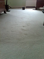 after carpet restretching / stretchhing by carpet doctors in richmond va