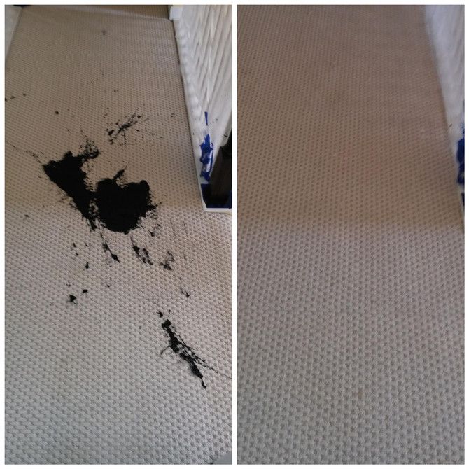 We are safely performing all of our carpet cleaning and carpet repair services