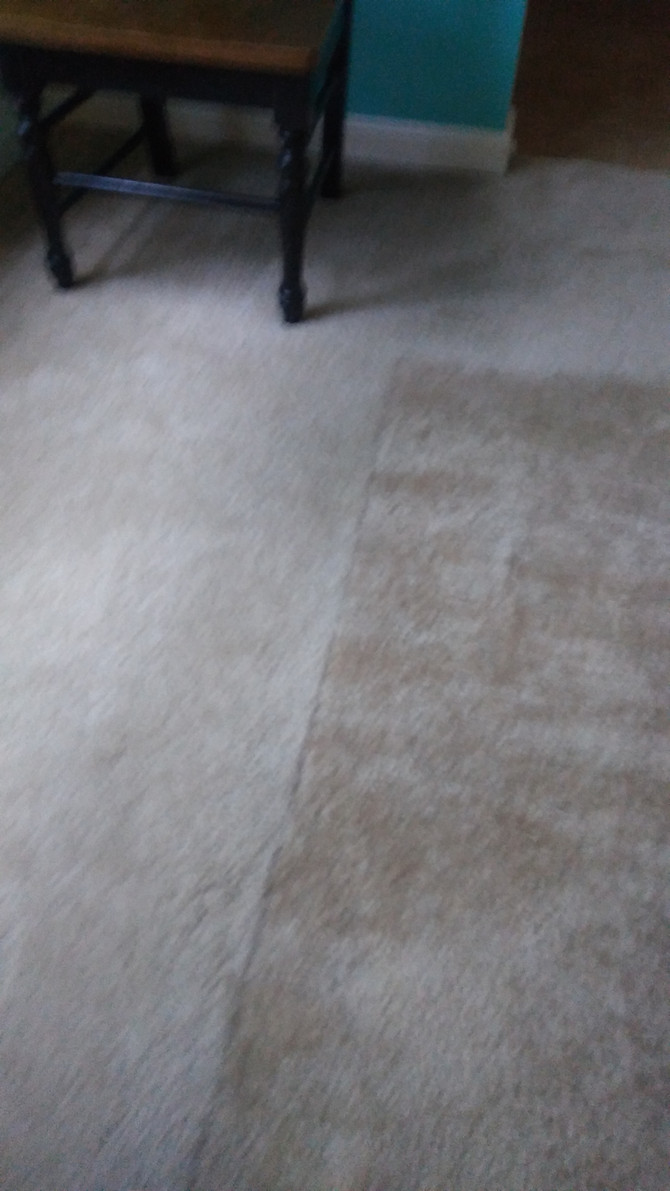 Restore your carpet before or after moving