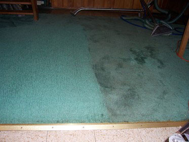 Holiday Carpet Cleaning & Repair