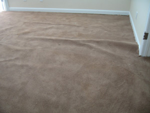 Spring has sprung along with buckling in your carpeting & squeaks in you subfloor