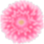 Flower_Pink_Transparent_Clip_Art_Image.p