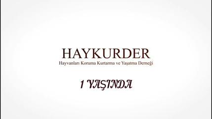 HAYKURDER 1 YAŞINDA