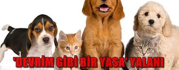 hayvan-haklari-yasasi-yalani-g-b.jpg