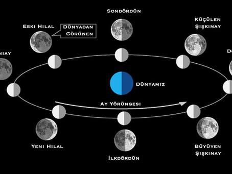 Ay'ın hareketi ve evreleri