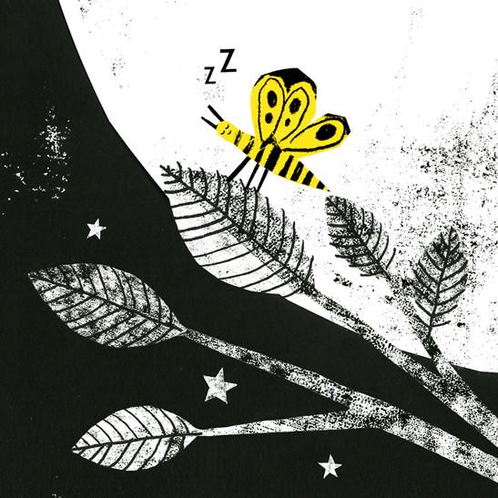 favourite butterfly.jpg