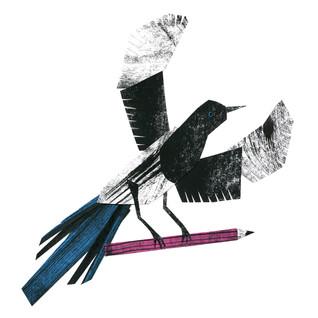 Pencil magpie