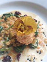 Dahl de lentilles corail pousses d'épinars tronc graines de courges & cranberries ©ôdewa