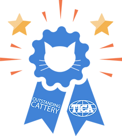 Outstanding-Cattery-Ribbon2019.png