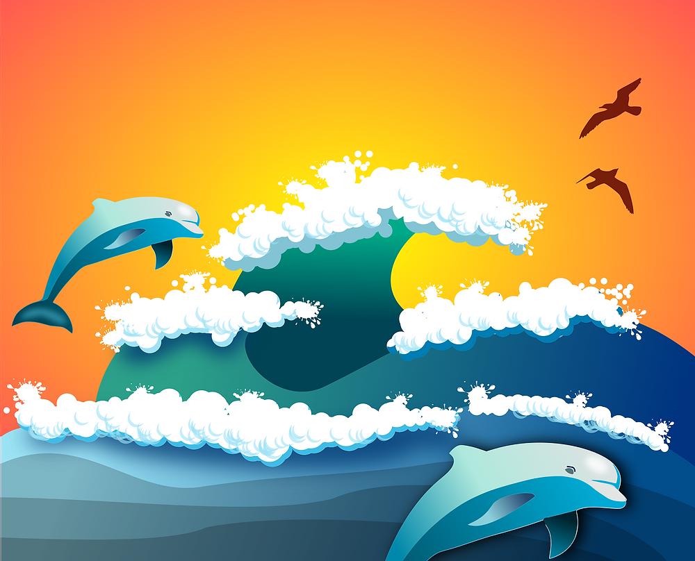 dolphins, beach
