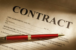 Contract & Document Review