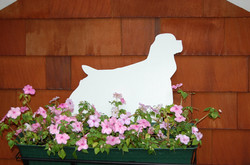 MDG Flower Box