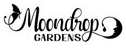 MDG soap logo version 3 just name .jpg
