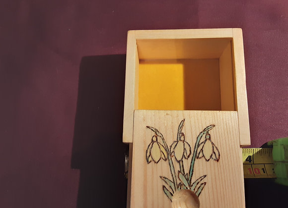 Snowdrop box
