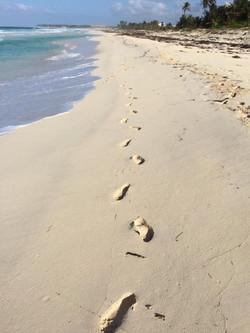 footprints beach.jpg