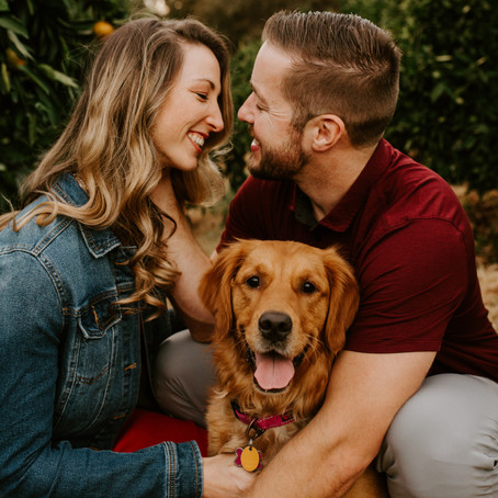 Katie & Alan - The Cutest Farm Engagement Shoot with their Dog!