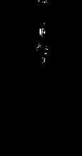 racine01[1246].png