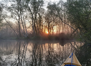 Easter 2019 On the Broads Day 3 A new section of the Walsham and Dilam Canal.