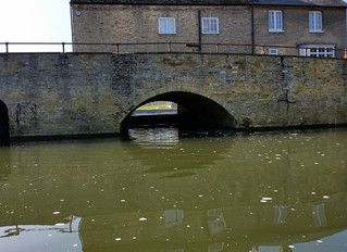 A Paddle on The River Cam with very few punts to dodge!