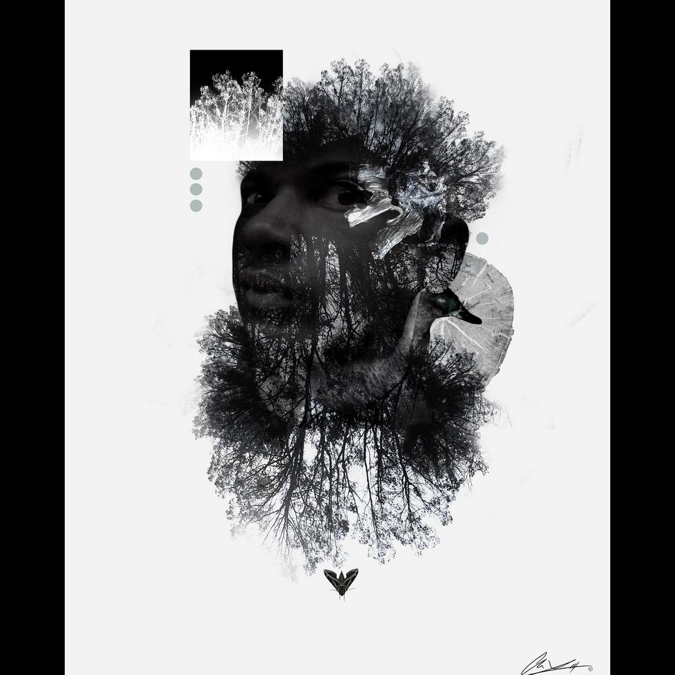 Frame of Mind.png