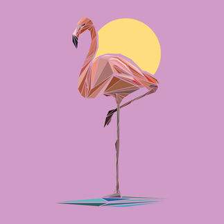 Fractured-Flamingo.png