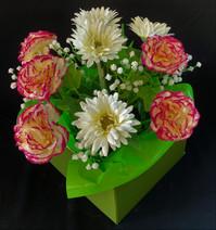 Carnation Comfort