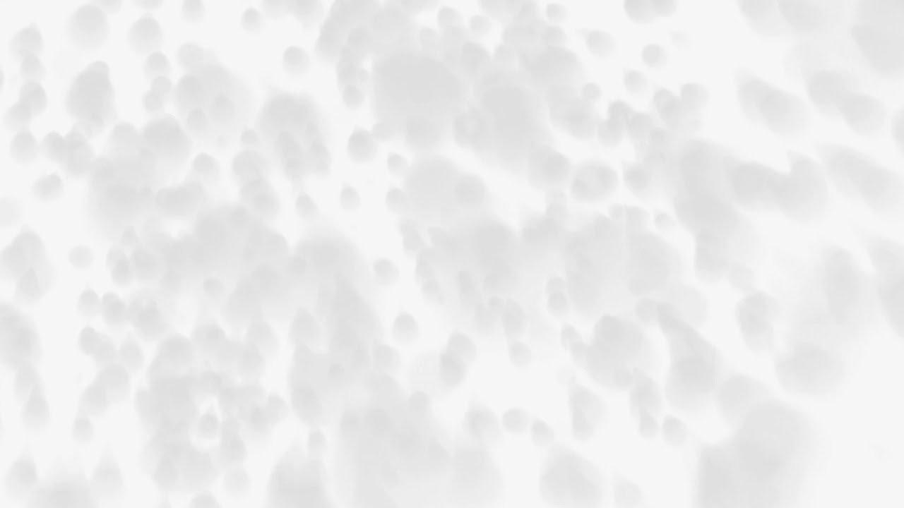 White B.jpg
