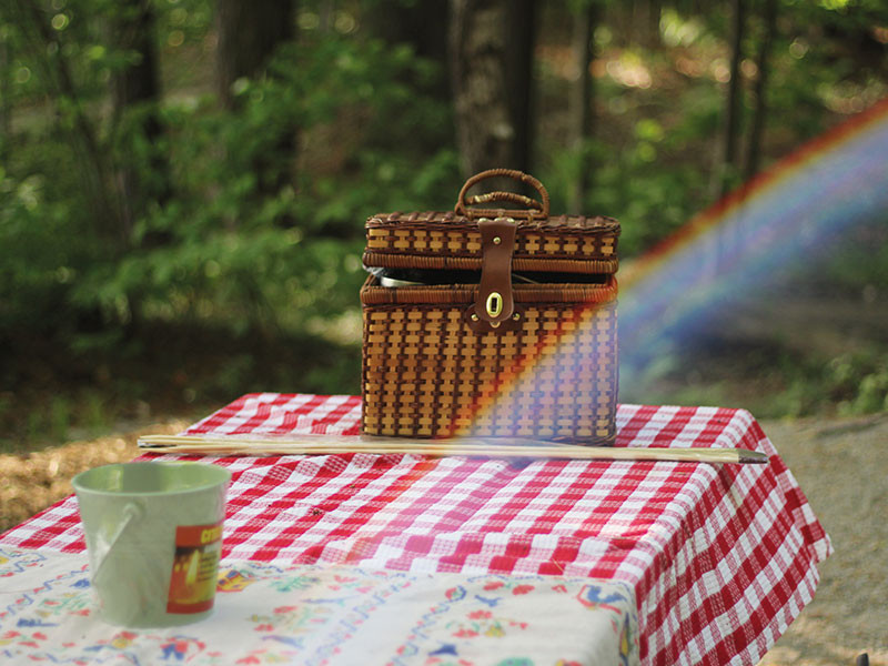 Perfect picnic from a nutritional therapist