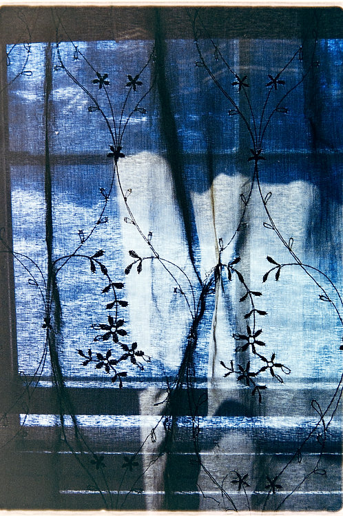 """""""Curtain"""" 5x7 Print"""