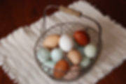 Pastured eggs in basket