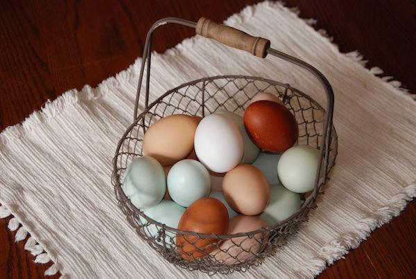 Pastured eggs in basket