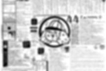シュラスコ44データ.jpg