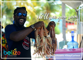Belize Lobster Season is now Open