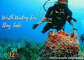 Stay Curious Belize Campaign