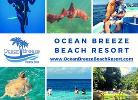 Activities at Ocean Breeze