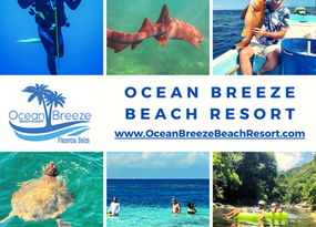 Activities at Ocean Breeze