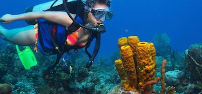 thumb-diving-1.jpg