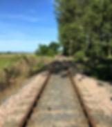 Screen Shot 06-09-20 at 04.37 PM.JPG