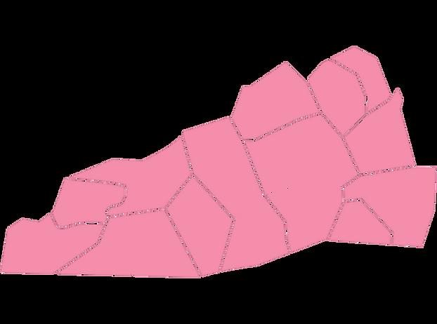 2019-01-03_NC-Map-Regions_Region-1.png