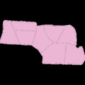 2019-01-03_NC-Map-Regions_Region-2.png