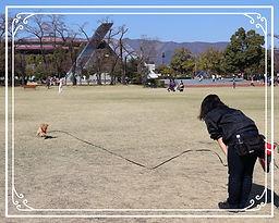 Trainer Hosaka